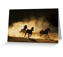 Out of the dust..... Greeting Card