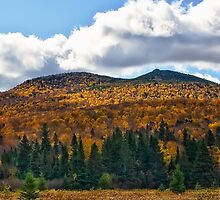 Baxter State Park by Gary Smith