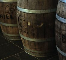 Wine barrels by Oceanna Solloway