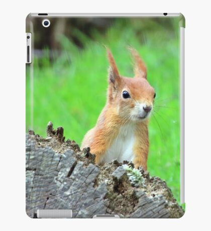 hows there iPad Case/Skin