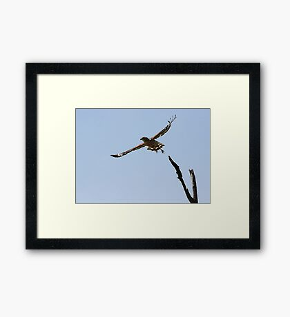 Ready to Hunt Framed Print