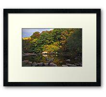 Allen Banks Framed Print
