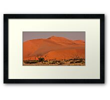 Sand rises over a past of trees Framed Print