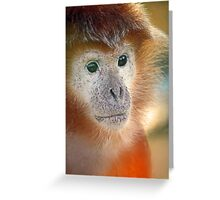 Treacle coloured monkey Greeting Card