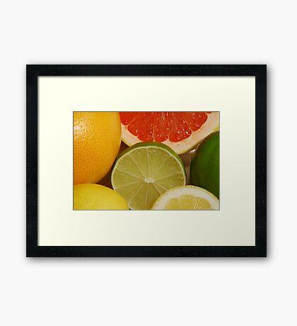 Citrus Fruit Still Life Framed Print