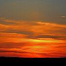 Golden skies by sarnia2