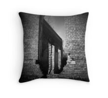 Window of the Past Throw Pillow