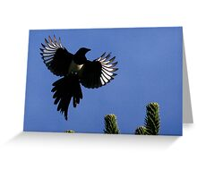 Flight Of The Magpie Greeting Card