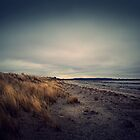 Marram grass. by photo-kia