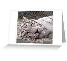 Cant a girl get her beauty sleep around here!!? Greeting Card