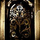 Door to the Future / Door to the Past by hologram