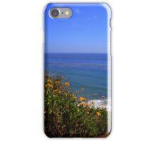 Spring at La Piedra State Beach iPhone Case/Skin
