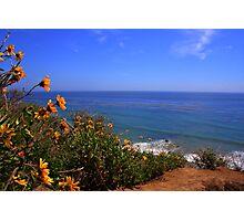 Spring at La Piedra State Beach Photographic Print