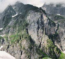 Below Johannesburg Impasto - North Cascades National Park by Larry Darnell