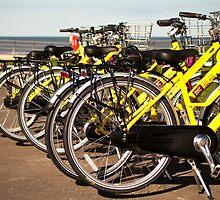 Bike Rack by Peter Elliott