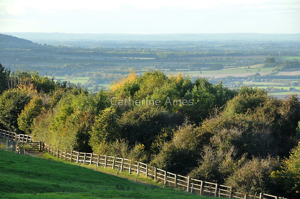 view over Broadway on the Cotswolds Way, UK by Catherine Ames