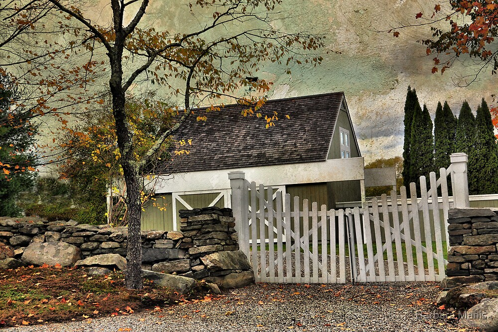 Country Scene by Barbara Manis