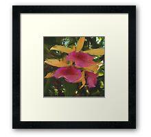 healing345 Framed Print