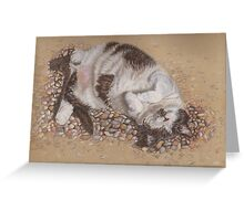 felix catching rays Greeting Card