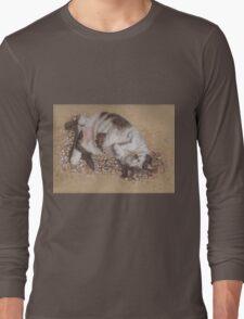 felix catching rays Long Sleeve T-Shirt