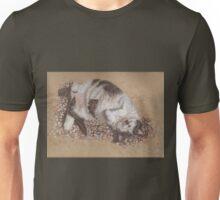 felix catching rays Unisex T-Shirt