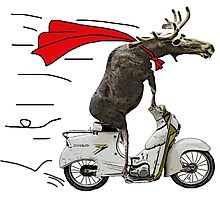 moped moose Photographic Print