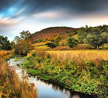 Knockfarrel in Autumn  by John Ellis