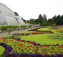 The Palm House at Kew Gardens by Rumyana Whitcher