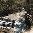 Chalk Ridge Falls, Belton Texas by linmarie