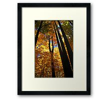 ~stand tall~ Framed Print