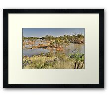 Water In The Outback Framed Print