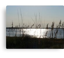 Fall Day In North Florida Canvas Print