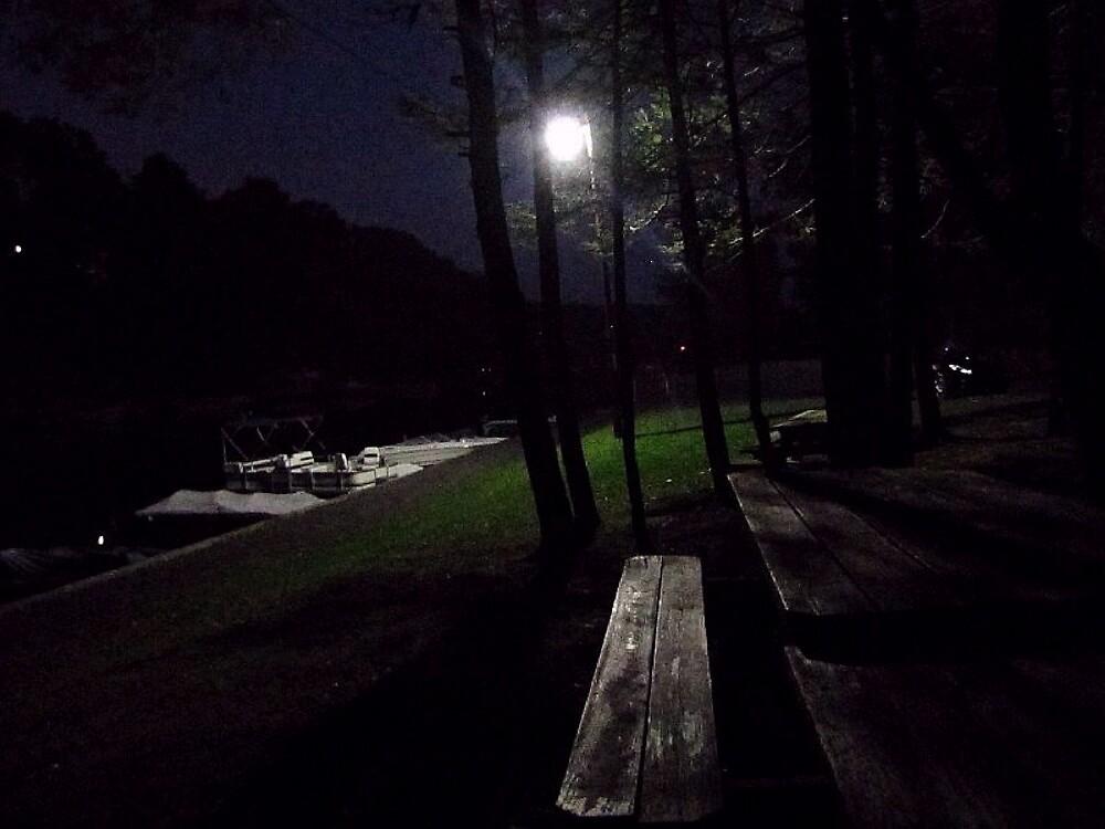 Late Night At The Lake by David Dehner
