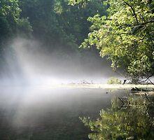 Into The Fog by RebeccaBlackman