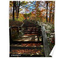 Autumn Steps Poster