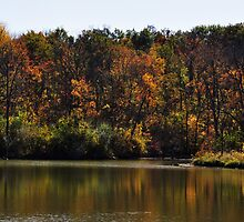 Autumn at Prairie Creek Reservoir-Muncie Indiana by mltrue
