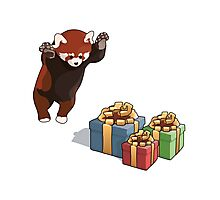 Red Panda Gets Presents Photographic Print