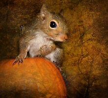 Pumpkin-Eater by Kay Kempton Raade