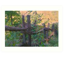 Just an Old Fence Art Print