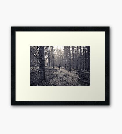 If you go into the woods... Framed Print