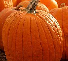 Having a Ball in the Fall, Pumpkin by kelleygirl