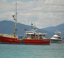 Waubs Bay Boats by Yvonne Segda