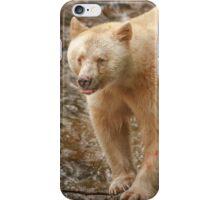 Spirit bear raspberry iPhone Case/Skin