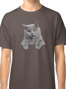 Blue British Shorthair Cat in your pocket! Classic T-Shirt