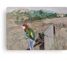 Parrot trapeze Canvas Print