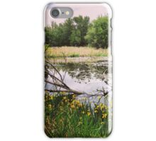 Swampy Wetland Area in Washington State iPhone Case/Skin