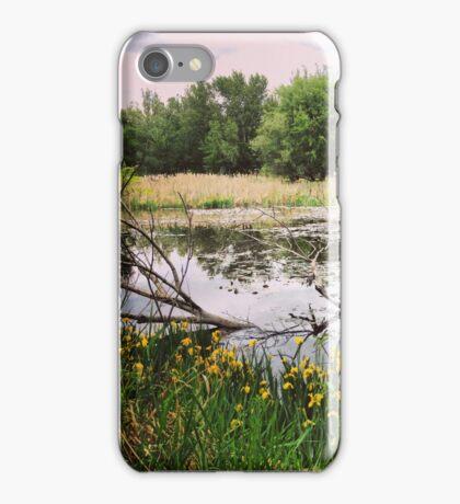 Swampy Wetland Area in Washington State iPhone Case/Skin
