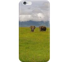 Ngrongoro Elephants-Signed iPhone Case/Skin