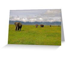 Ngrongoro Elephants-Signed Greeting Card