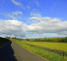 An August Evening........................Ireland by Fara